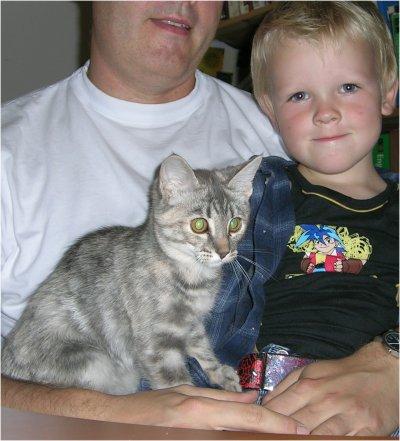Vores kat Mivsen